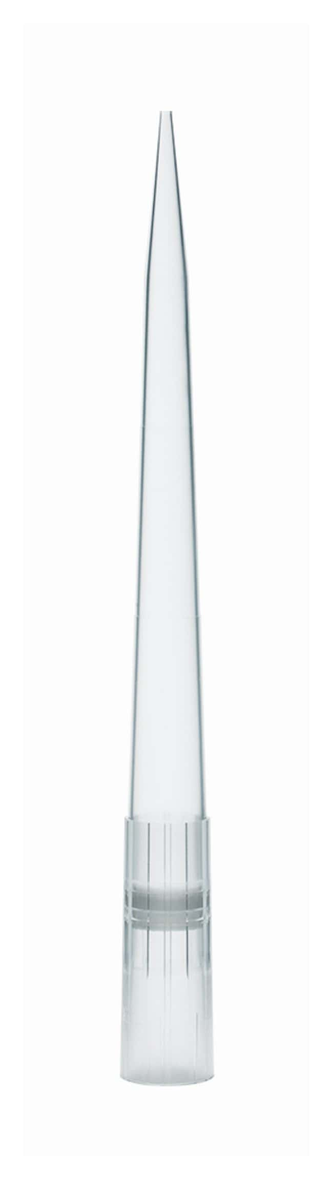 BiotixxTIP Low-Retention Filter Pipette Tips Vol.: 1000μL:Pipette Tips