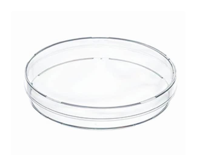 Petri Dishes gh Lot de 10 instruments transparents en polystyr/ène pour labo et levure bact/érienne 55 mm 10 sets 150mm