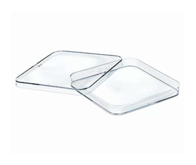 Greiner Bio-One Square Petri Dishes with Vents