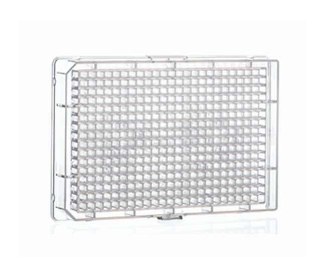 Greiner Bio-One 384-Well Polypropylene Conical Bottom Microplates:Dishes,