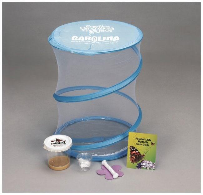Carolina Individual Butterfly Kit :Teaching Supplies:Biology Classroom