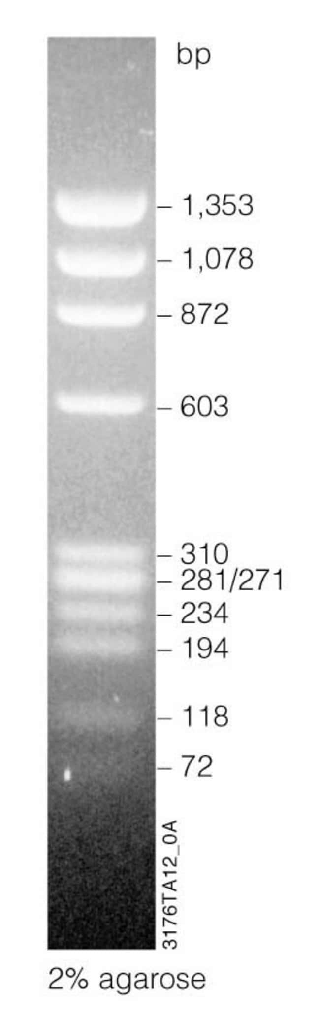Promega BenchTop DNA Markers:Life Sciences:Biochemicals and Reagents