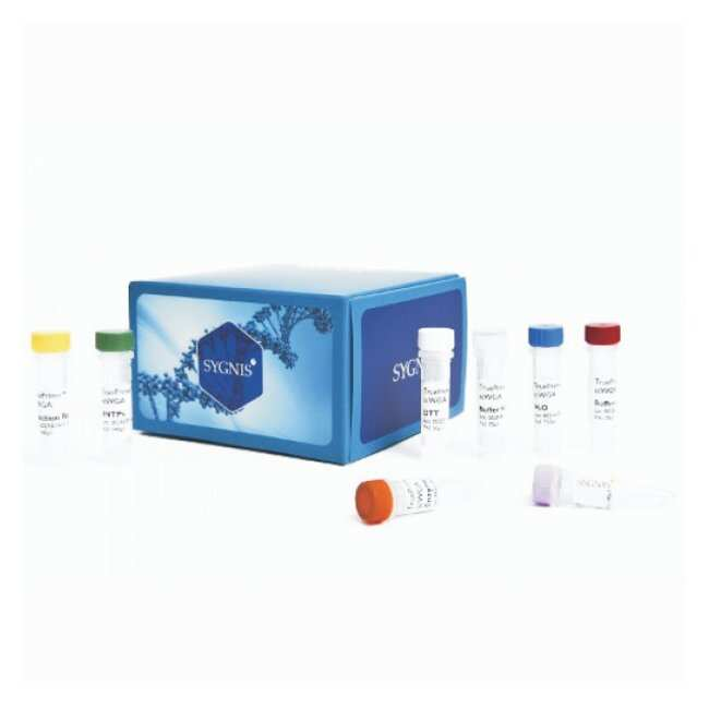 Expedeon TruePrime Single Cell WGA Kit version 2.0:Life Sciences:PCR and