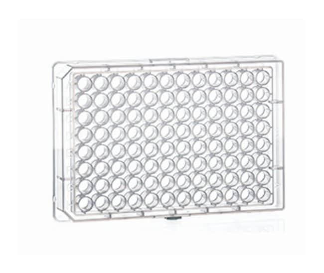 Greiner Bio-One96-Well Polypropylene Conical Bottomed Microplates V bottomed:Microplates
