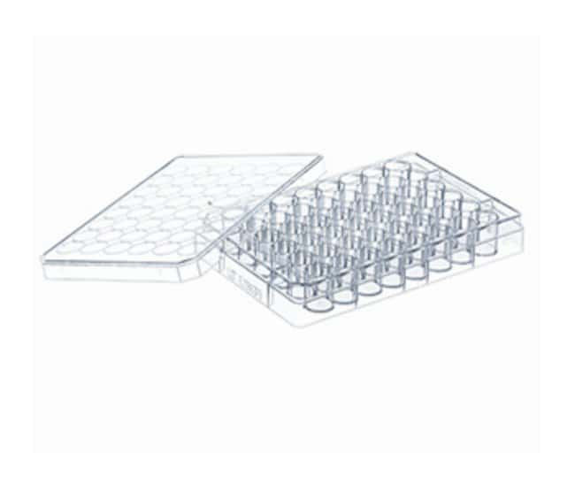 Greiner Bio-One CELLSTAR Cell Culture Multiwell Microplates::