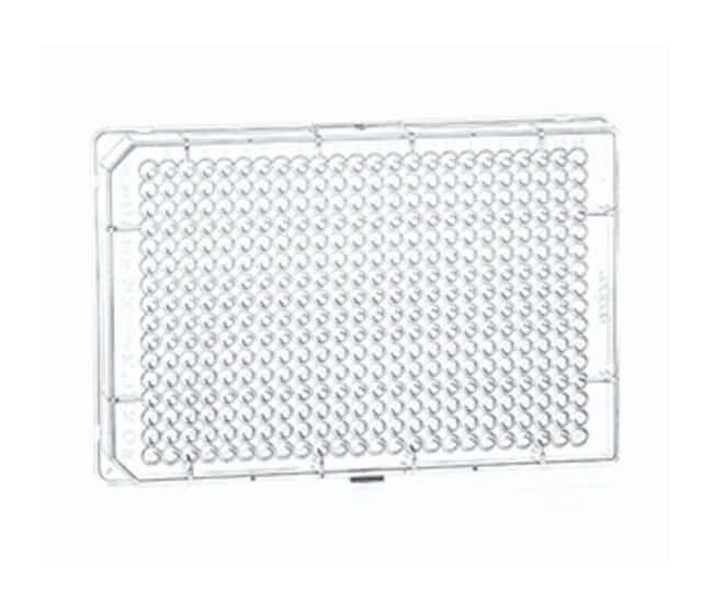 Greiner Bio-One Small Volume 384 Well Polystyrene Flat Bottom Microplates:Dishes,