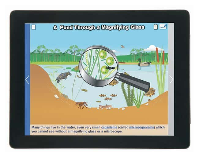 NewPath Learning Elementary Science Multimedia Lesson Set of 6, Single
