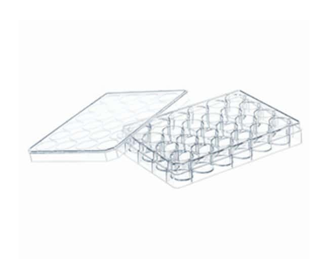 Greiner Bio-One Advanced TC Treated Sterile Cell Culture Multi-well Plates::