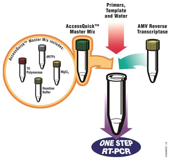 Promega AccessQuick RT-PCR System:Life Sciences:Biochemicals and Reagents