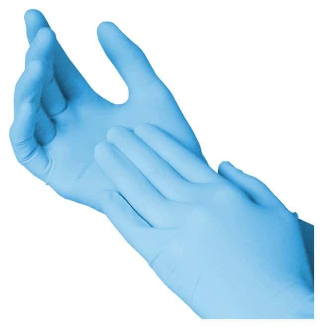 Fisherbrand Powder-Free Nitrile Gloves:Gloves, Glasses and Safety:Gloves