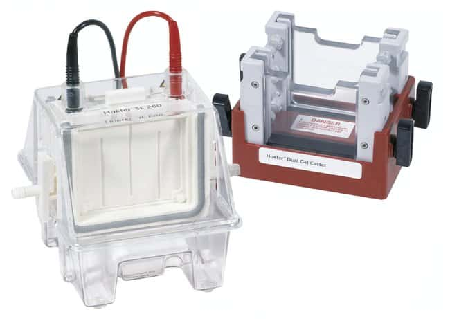 Hoefer Mighty Small II Mini Vertical Electrophoresis Systems:Electrophoresis,