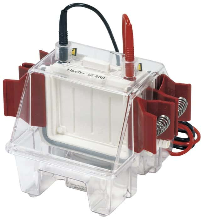 Hoefer™ Mighty Small™ II Mini Vertical Electrophoresis Systems For 10 x 10.5cm or 10 x 8cm gels Hoefer™ Mighty Small™ II Mini Vertical Electrophoresis Systems
