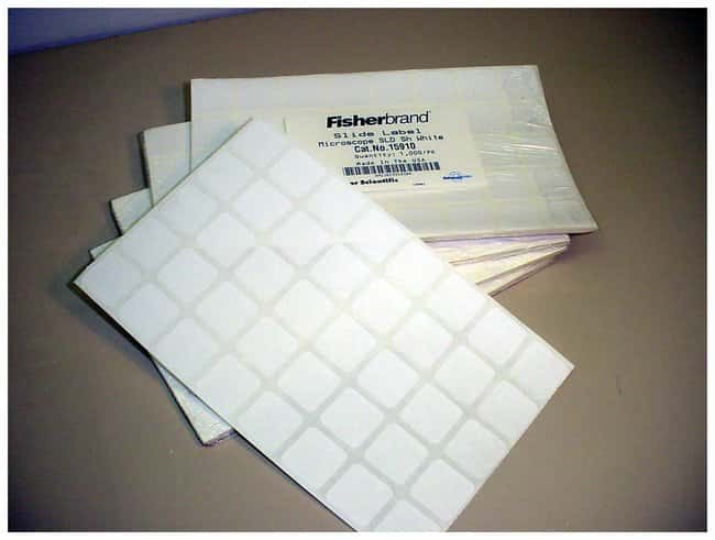 Fisherbrand Microscope Slide Labels 0 87 In 2 2cm Square Gloves