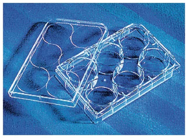 Corning CellBIND Surface Microplates :BioPharmaceutical Production:Cell