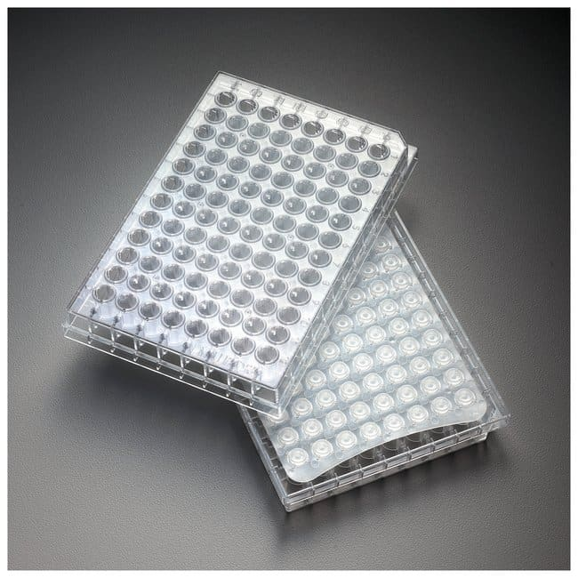 Merck™Placas de filtro MultiScreen™ Solvinert Multiscreen solvinert filter plates; Hydrophobic PTFE; 10/Pk. Merck™Placas de filtro MultiScreen™ Solvinert