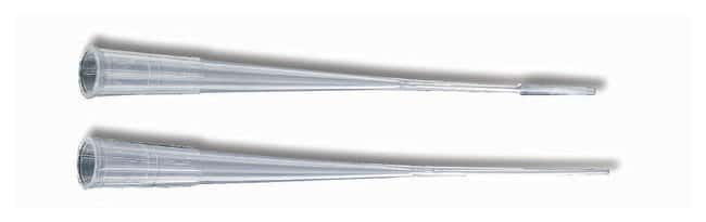 Fisherbrand Premium Plus MultiFlex Gel-Loading Tips:Pipets, Pipettes and