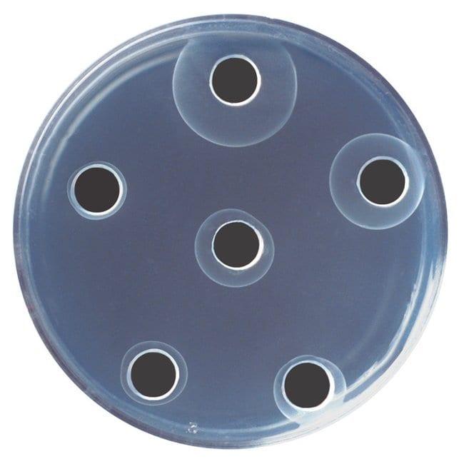 Edvotek™Radial Immunodiffusion Kit