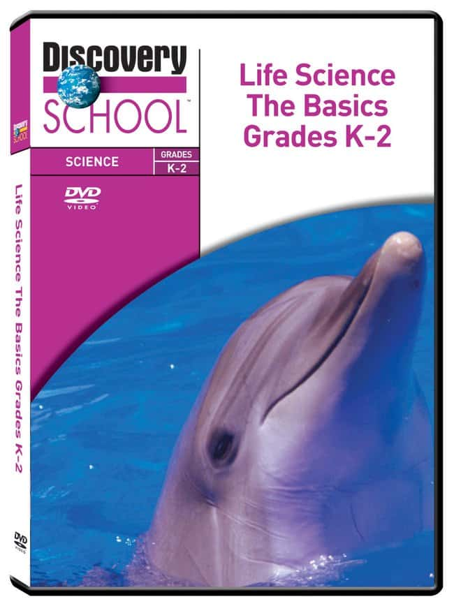 Discovery Education Life Science: The Basics :Teaching Supplies:STEM and