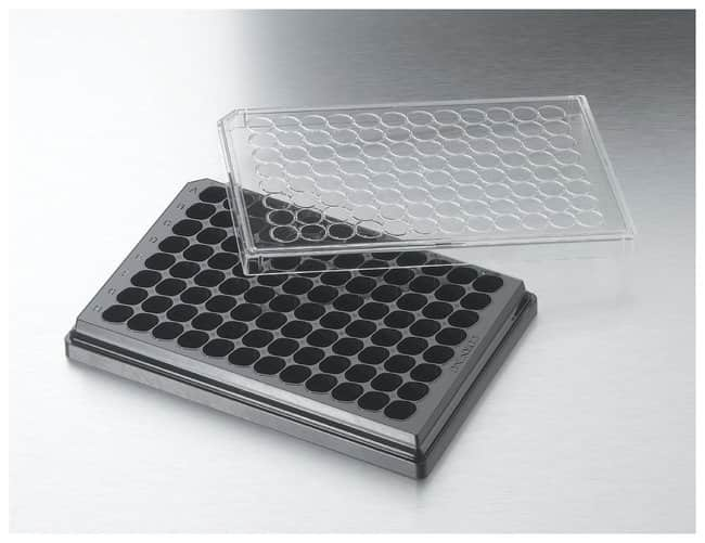 Corning™ Costar™ HTS Transwell™ 96-Well, Cell Culture-Treated, Transwell Receiver Plate - Flat-Bottom Microplate