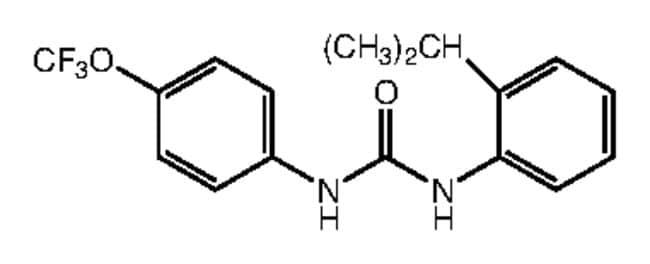 1-(2-Isopropylphenyl)-3-[4-(trifluoromethoxy)phenyl]urea, 97%, Alfa Aesar™ 1g Ver productos