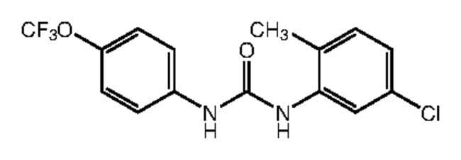 1-(5-Chloro-2-methylphenyl)-3-[4-(trifluoromethoxy)phenyl]urea, 97%, Alfa Aesar™ 250mg products