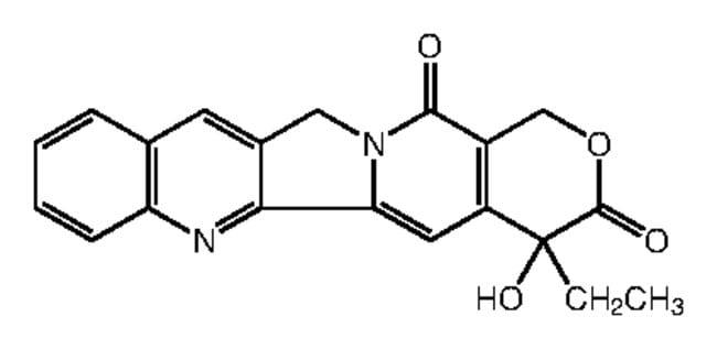 Camptothecin:Life Sciences:Cell Analysis