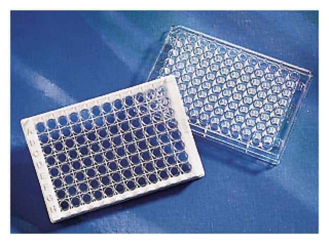 Corning Surface Modified Stripwell Microplates:Dishes, Plates and Flasks:Microplates