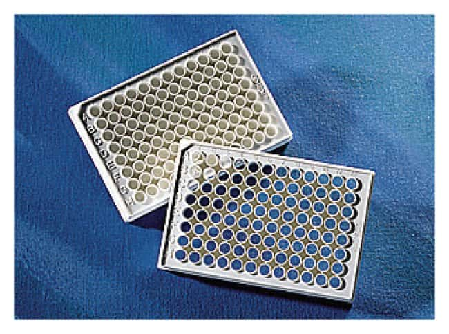 Corning™ 96-Well Half Area Flat Bottom Polystyrene NBS™ Microplates