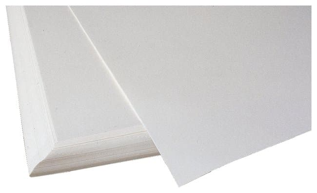 Fisherbrand Pure Cellulose Chromatography Paper Thickness: 0.35mm:Chromatography