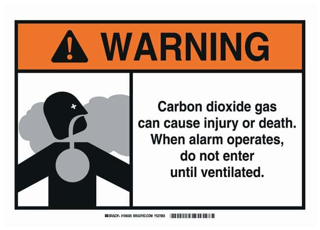 Brady Polystyrene Warning Sign: CARBON DIOXIDE GAS CAN CAUSE INJURY OR