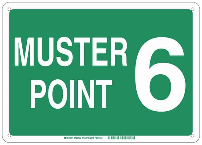 Brady Plastic Sign: MUSTER POINT 6:Gloves, Glasses and Safety:Facility