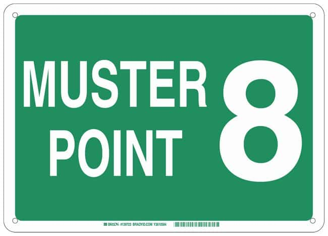 Brady Plastic Sign: MUSTER POINT 8:Gloves, Glasses and Safety:Facility
