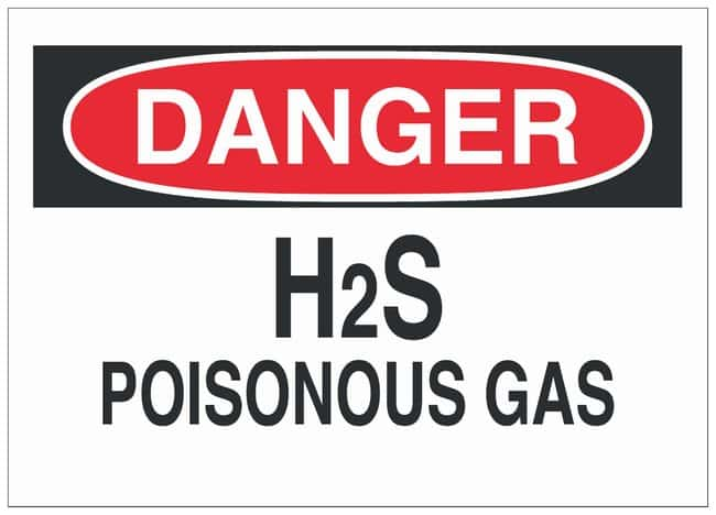 Brady Polystyrene Danger Sign: H2S POISONOUS GAS:Gloves, Glasses and Safety:Facility