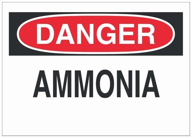 Brady Polystyrene Danger Sign: AMMONIA Black/red on white; Non-adhesive;