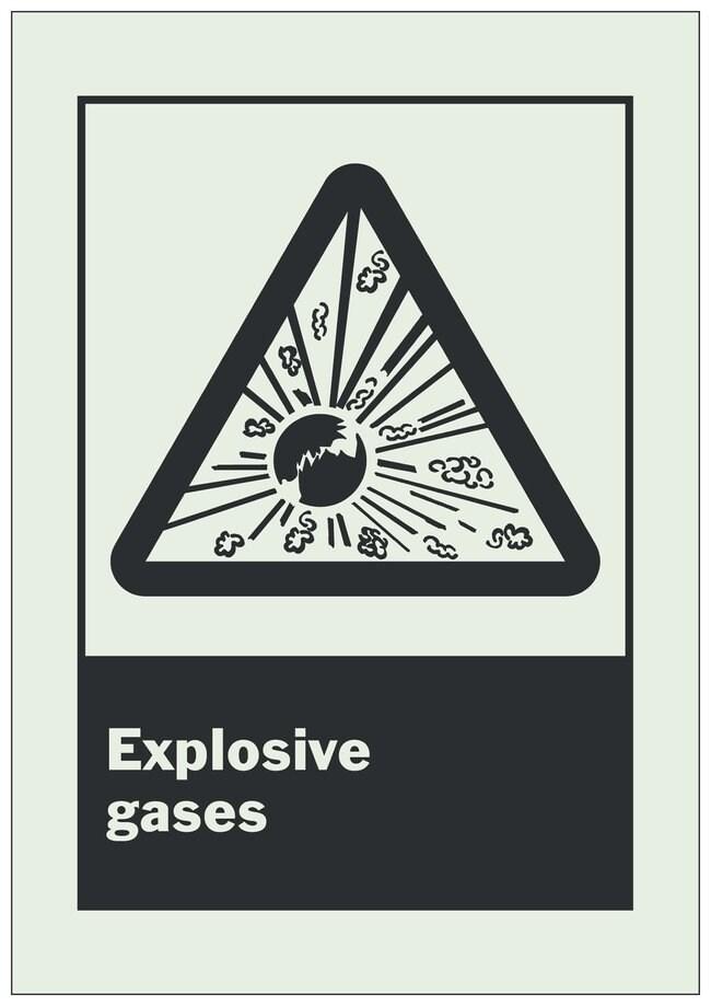 Brady BradyGlo Warning Sign: EXPLOSIVE GASES Black on glow; 7 in. x 10