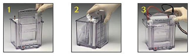 Invitrogen&trade;&nbsp;Novex&trade; XCell <i>SureLock</i>&trade; Mini-Cell 1 unit Vertical Gel Systems