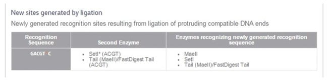 Thermo Scientific AatII (10 U/L) :Life Sciences:Enzymes and Inhibitors