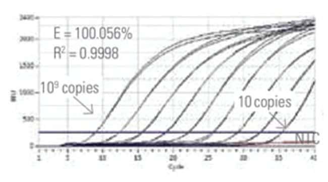 Thermo Scientific Luminaris Color Probe qPCR Master Mix:Life Sciences:Molecular