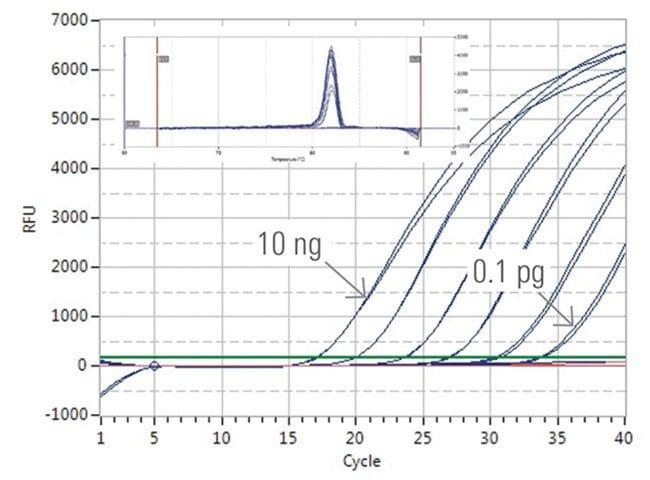 thermo scientific    luminaris color higreen qpcr master mix  fluorescein 500 reactions thermo Thermo Fisher Scientific  Thermo Scientific Coloring Book