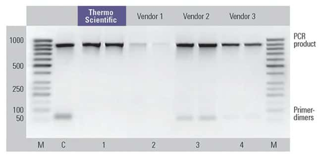 Thermo Scientific™GeneJET Gel Extraction and DNA Cleanup Micro Kit: Biochemicals and Reagents Life Sciences