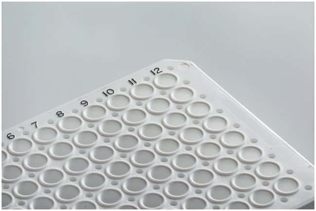 Thermo Scientific™ SuperPlate PCR Plates, 96-well