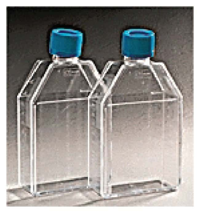 Corning BioCoat Collagen IV Rectangular Canted Neck Culture Flask :Dishes,