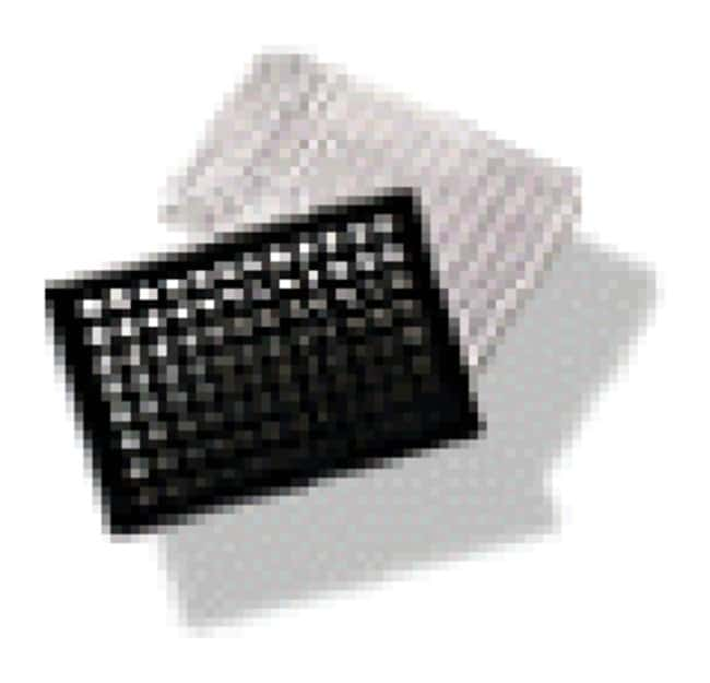 Corning BioCoat 384-Well, Collagen Type I-Treated, Flat-Bottom Microplate
