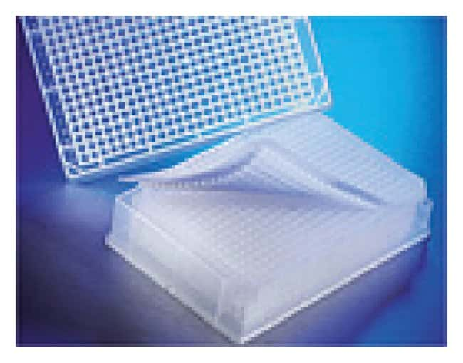 Corning Clear Polypropylene 384-Well Deep-Well Plates:Dishes, Plates and