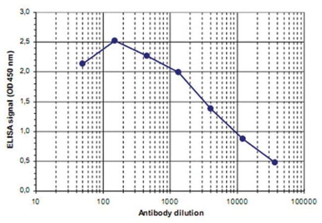 Fkbp3, Rabbit, Polyclonal Antibody, Abnova 100µL; Unlabeled:Life Sciences