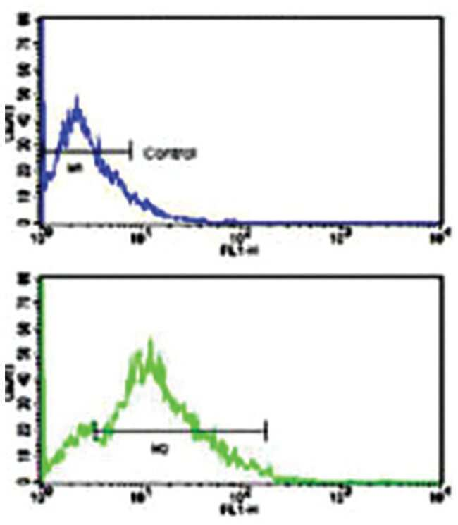 CD3G, Rabbit, Polyclonal Antibody, Abnova 400µL; Unlabeled:Life Sciences