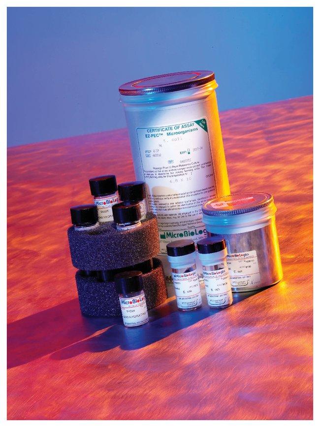 Microbiologics EZ-PEC Microorganism Preparations:Life Sciences:Microbiology