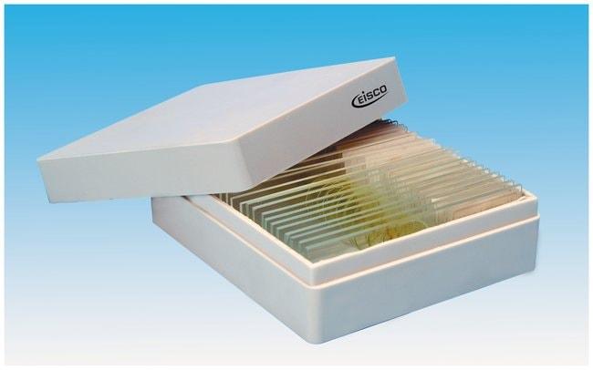 Eisco™Polystyrene Slide Boxes