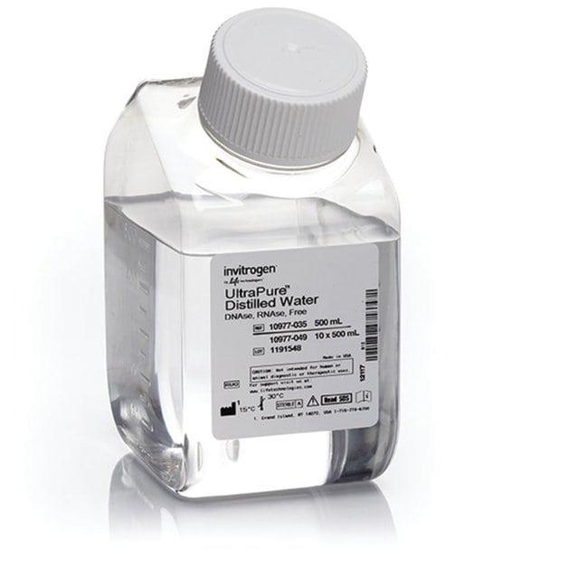 Invitrogen™UltraPure™ DNase/RNase-Free Distilled Water: Bioreagents Chemicals
