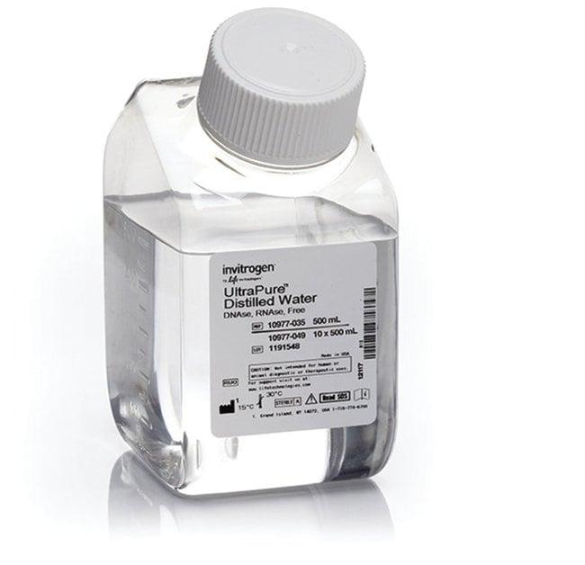 Invitrogen™ UltraPure™ DNase/RNase-Free Distilled Water 500mL ... | {Tiefkühlschränke 47}